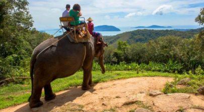 Elephant riding Pattaya