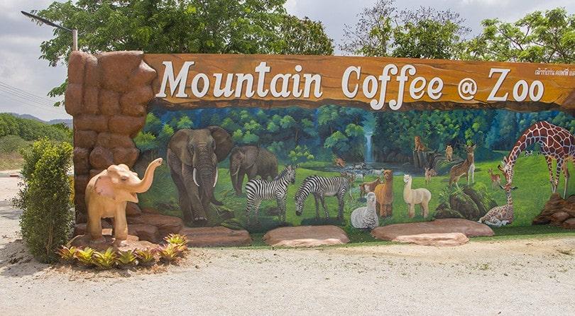 Mountain coffee at zoo